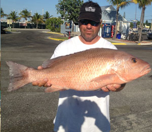 Key West Mangrove Snapper