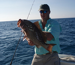 Key West Red Grouper