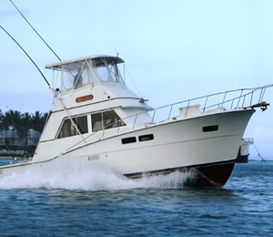 Top 3 fishing charters to do in key west for Best fishing charters in key west