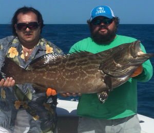 Key West Fishing Report End of November