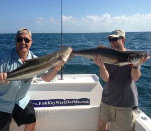 Key West Fishing Catch of the Week: Cobia